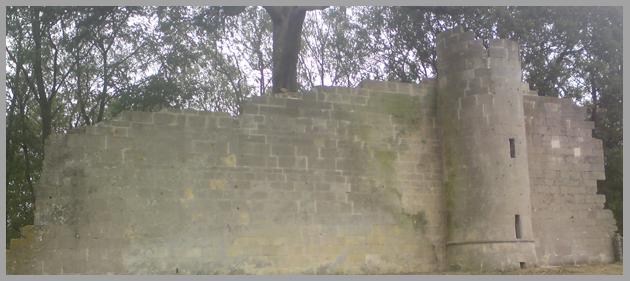 Priton Castle, Croome Park